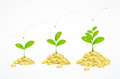 Money Tree Concept. Vector. Money Tree Concept. Earnings Growth and Profit. Vector illustration Stock Photography