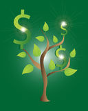 Money Tree Design. Vector illustration of a tree with dollar sign on a green background Stock Image