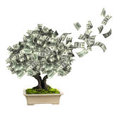 Money tree with dollar banknotes. Isolated on white background. 3d render Royalty Free Stock Photo