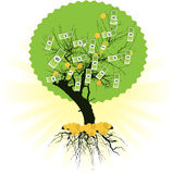 Money tree with dollars Royalty Free Stock Photography