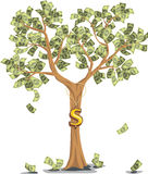 Money  tree with dollars Royalty Free Stock Photos