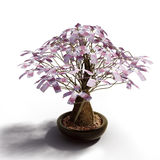 Money_tree_euro Stock Photos