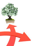 Money tree with euro banknotes. 3d money tree euro banknotes and two bound arrows of red color, specifying different directions.  on white background Royalty Free Stock Image