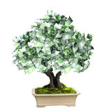 Money tree with euro banknotes. 3d money tree with euro banknotes.  on white background Royalty Free Stock Photo