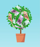 Money tree with euro banknotes growing. Business economic investment vector concept Stock Illustration