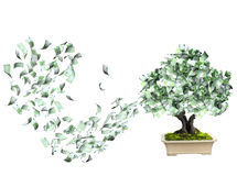 Money tree with euro banknotes. Isolated on white background. 3d render Royalty Free Stock Photo