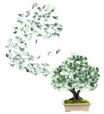 Money tree with euro banknotes. On white background. 3d render Stock Image