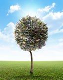 Money Tree European Euro Stock Images