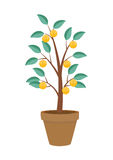 Money Tree, Financial Growth Flat Concept Vector Illustration. EPS10 Stock Photography