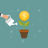 Money Tree, Financial Growth Flat Concept Vector Illustration. EPS10 Stock Images