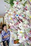 Money tree with a girl Stock Photos