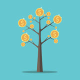 Money tree, gold coins Royalty Free Stock Images