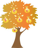 A money tree Royalty Free Stock Images