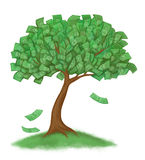 Money tree on grass Stock Photo