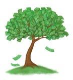 Money tree on grass Stock Photo