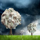 Money tree on green landscape. Conceptual image of money tree on green landscape royalty free stock photo