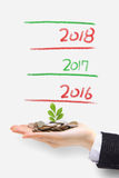 Money tree grow up in new year Stock Images