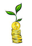 Money tree growth from coins stack, business investment concept, vector illustration Stock Photos
