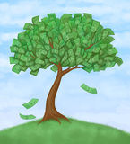 Money tree on hill Stock Photos
