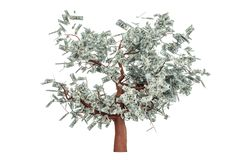 Money tree with hundred dollar bills, 3D rendering. Money tree with hundred dollar bills, 3D Royalty Free Stock Photo