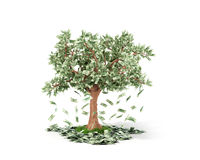 Money tree with hundred dollar bills growing on it and lying on. White grownd isolated on white background stock illustration