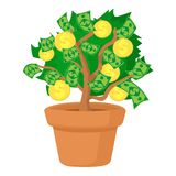 Money tree icon, cartoon style. Money tree icon. Cartoon illustration of money tree vector icon for web Stock Images
