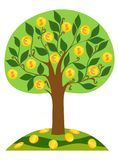 Money tree icon with gold coins. Vector illustration. Vector image of gold coins with dollar sign and euro on a green tree on a white background. The symbol of Stock Image