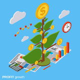 Money tree, investment, growth vector concept Royalty Free Stock Images