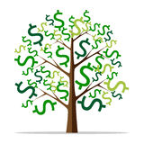 Money tree isolated Royalty Free Stock Image