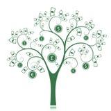 Money Tree. Isolated on White background. Vector Illustration Stock Photos