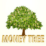Money tree isolated on white background. Vector Stock Images