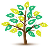 Money tree. With leaves in dollars. Illustration Stock Images