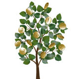 Money tree with leaves and gold coins. Instead of fruit Stock Photo