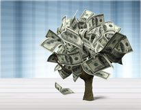 Money tree. Currency growth savings tree finance investment Stock Photography