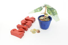 Money tree - an optimistic and risky investment Stock Photos