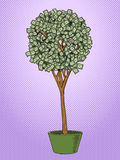 Money tree pop art style vector Royalty Free Stock Photo