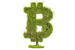 Money tree in the shape of bitcoin symbol, 3D rendering. On white background Stock Photo