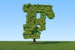 Money tree in the shape of franc sign on the green grass against. Blue sky, 3D Royalty Free Stock Image