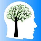 Money tree in shape of human brain Stock Photos