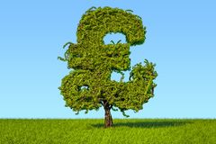 Money tree in the shape of a pound sterling symbol on the green. Grass against blue sky, 3D Stock Photography