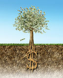 Money tree in soil cross section showing US Dollar sign roots Royalty Free Stock Photos
