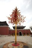 Money tree. In temple for the Chinese god of wealth stock photography