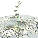 Money Tree with US Dollar bank notes in place of leaves Royalty Free Stock Images