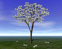 Free MONEY TREE WEALTH Stock Photography - 2682372