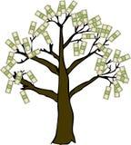 Money Tree on White. Who said money doesn't grow on trees Stock Image