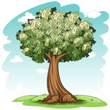 A money tree Royalty Free Stock Image
