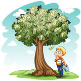 A money tree and a young boy Royalty Free Stock Photo
