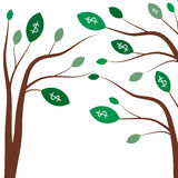 Money trees. Business concept with white dollar signs on the green tree leaves. Stock Images