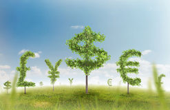 Money trees. Financial growth and success on a green summer natural green grass landscape with a single trees in the shape of a money sign showing a business Royalty Free Stock Images
