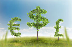 Money trees. Financial growth and success on a green summer natural green grass landscape with a single trees in the shape of a money sign showing a business Stock Photography